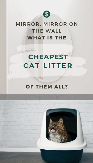 What is the cheapest cat litter? Cheap wood pellet cat litter made from pine