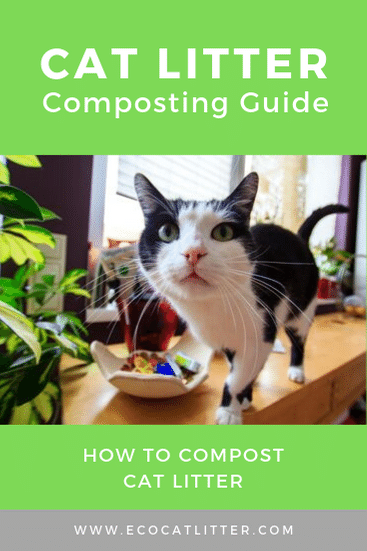 Cat Litter Composting Pinterest