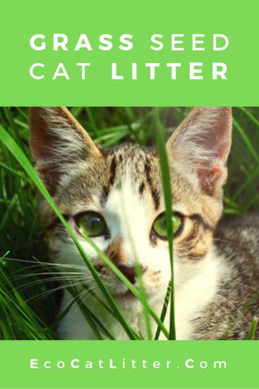 Grass cat litter