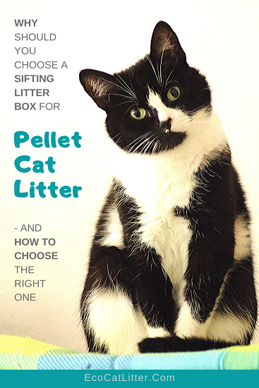 Why should you choose a sifting litter box for pellet cat litter - and how to choose the right one