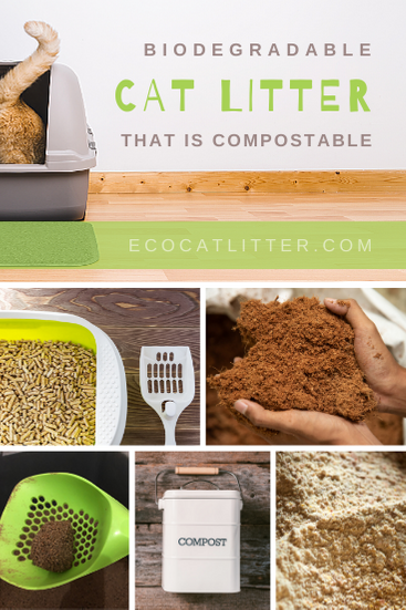 Biodegradable cat litter that is compostable