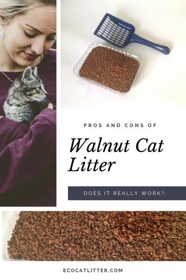 Walnut Cat Litter - Does it really work?